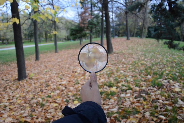 Človek stojí v lese a pozerá na okolie cez lupu.jpg